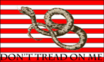 Original Design of Don't Tread on Me Banner